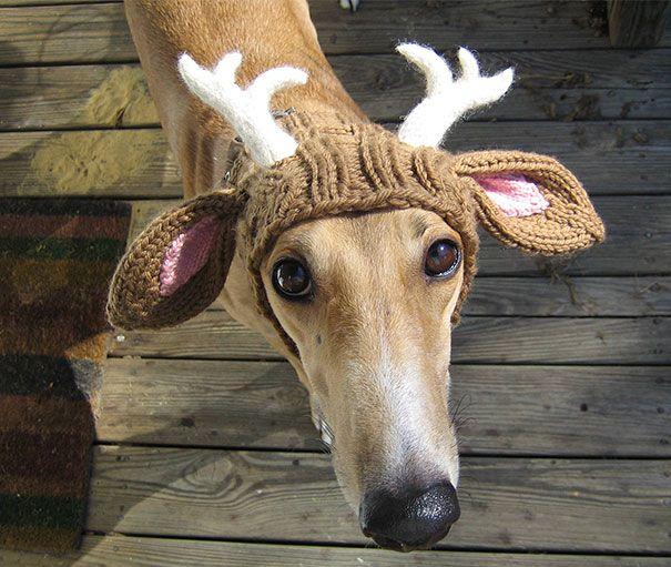 fake deer
